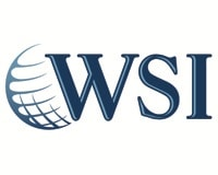 WSI (We Simplify the Internet)